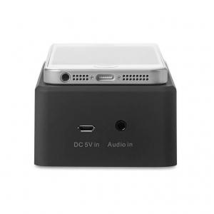 Amplifier speaker